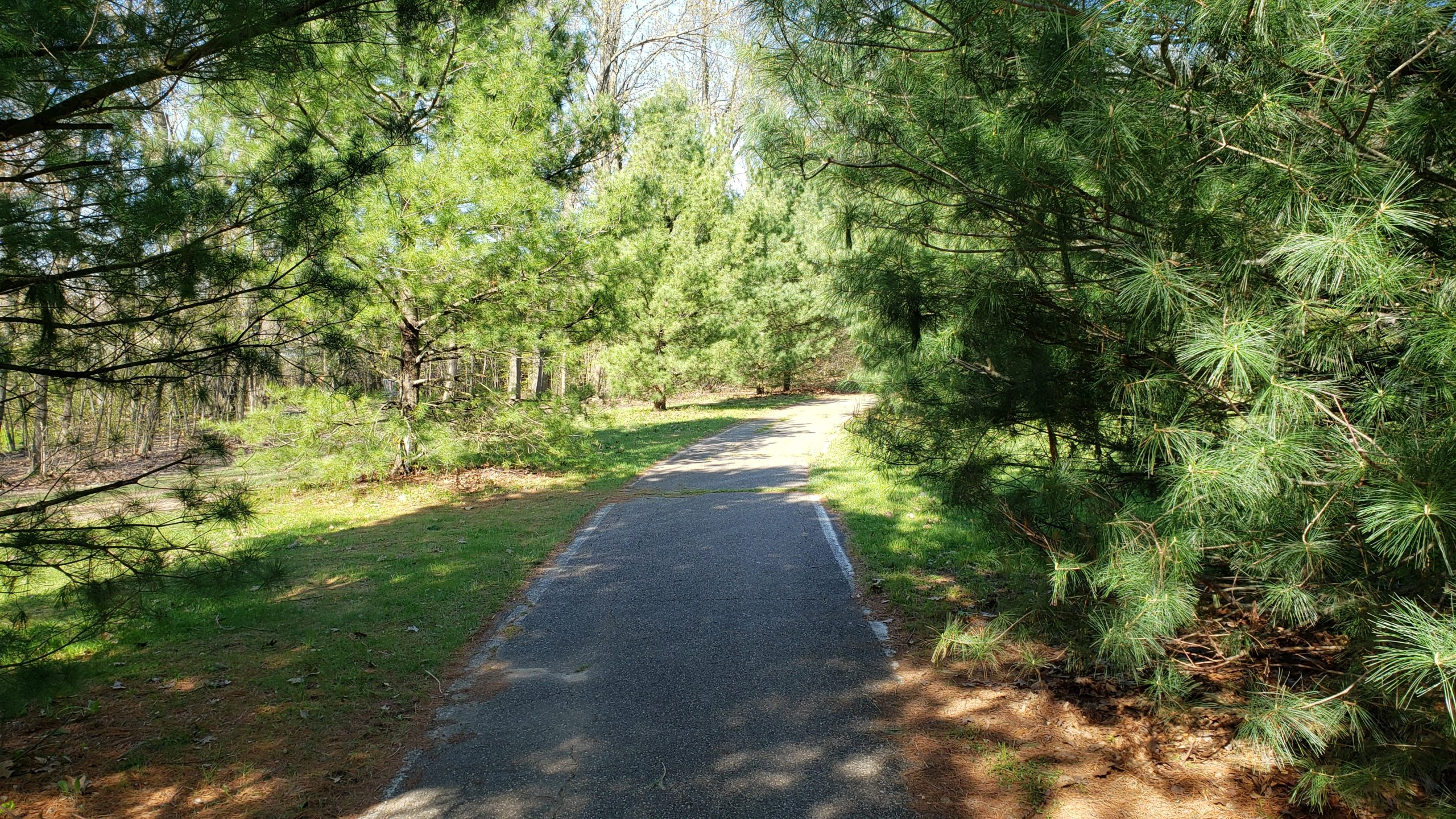 Recreation Area paved Trail two