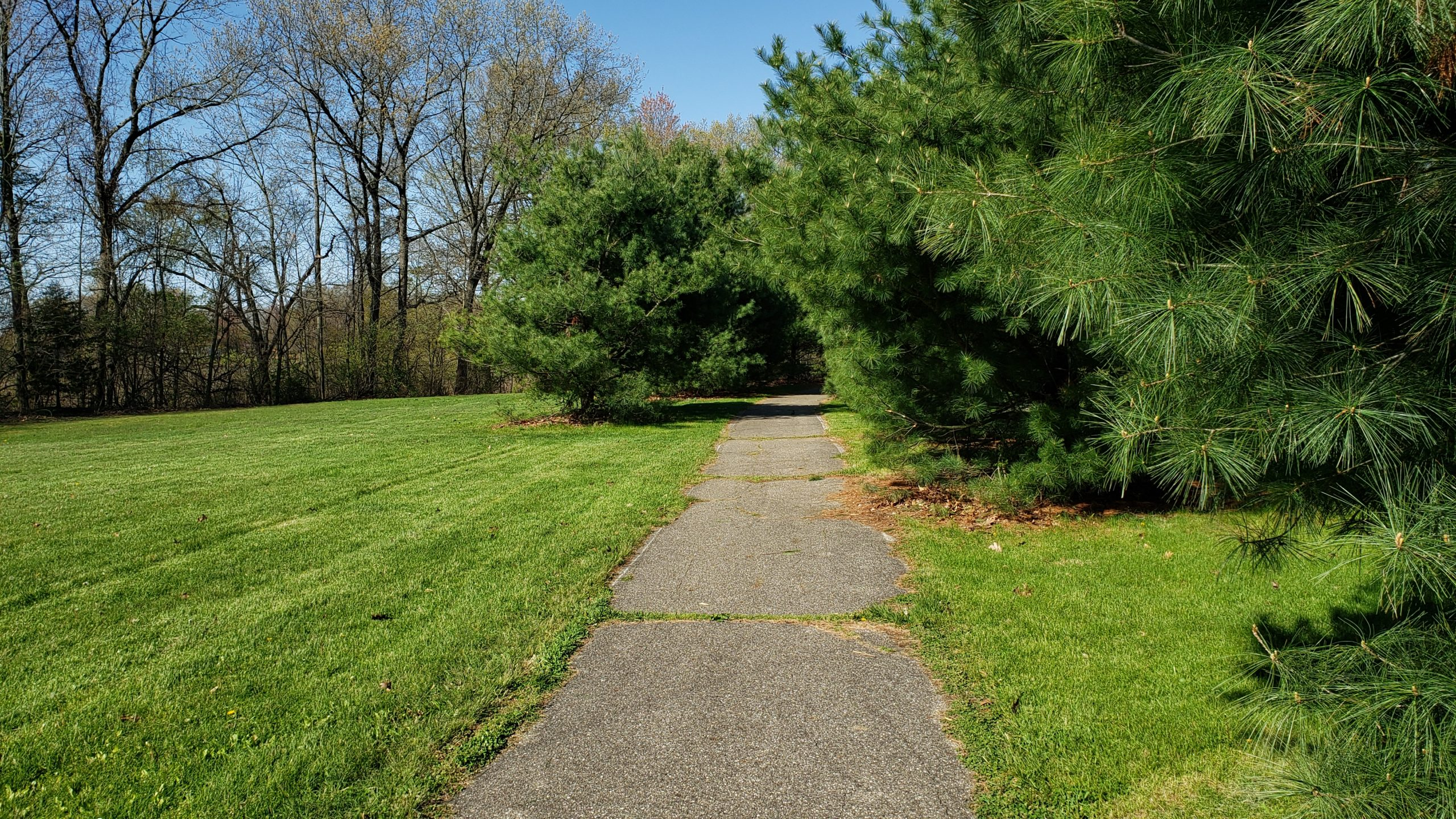 Recreation Area paved trail