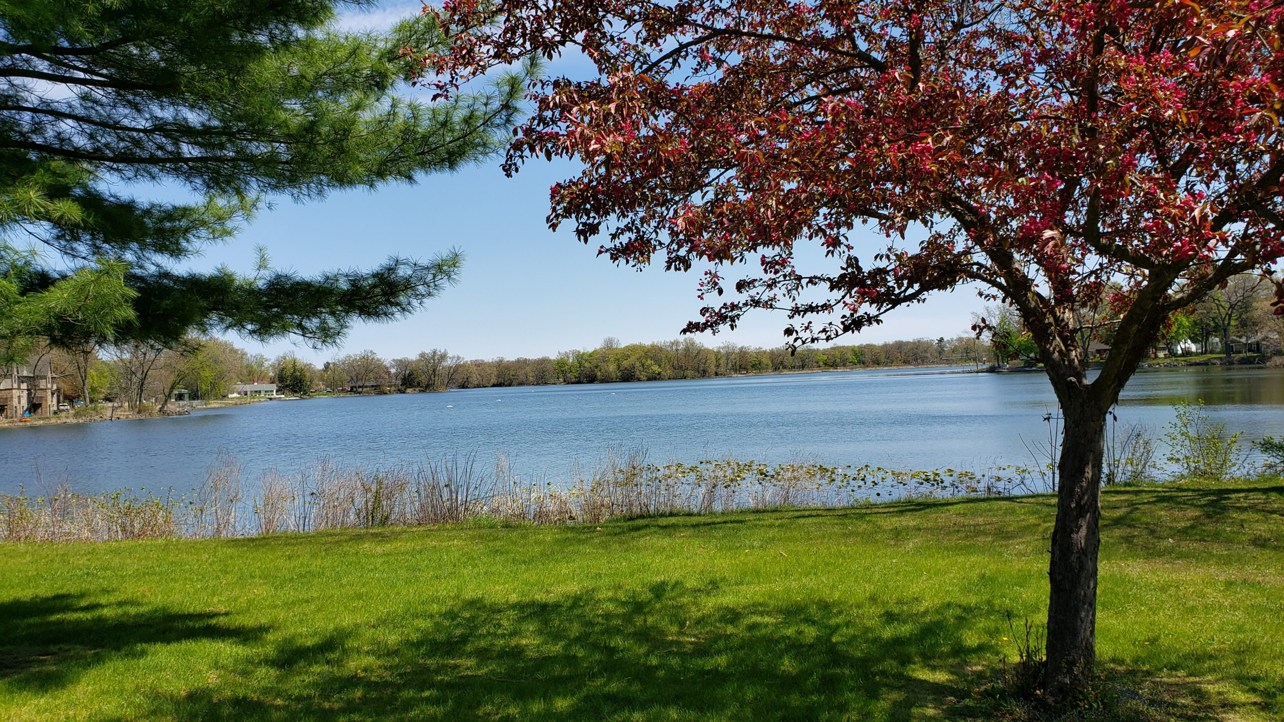 Veterans Park lake view